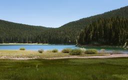 Svart lake royaltyfria foton