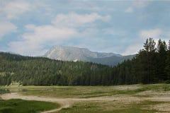 Svart lake Durmitor nationalpark Montenegro Royaltyfria Bilder