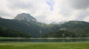 Svart lake Durmitor nationalpark Montenegro Arkivfoto