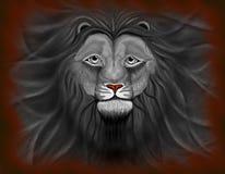 svart lion Royaltyfria Bilder