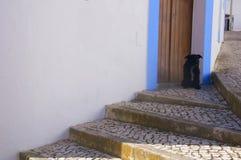 Svart liten hund som skyddar ingången av huset arkivbild