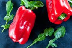 Svart mat: röd peppar och arugula fotografering för bildbyråer