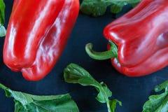 Svart mat: röd peppar och arugula arkivfoto