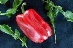 Svart mat: röd peppar och arugula royaltyfri foto