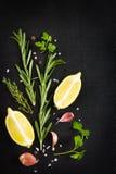 Svart matbakgrund med nya aromatiska örter och kryddor, kopia Royaltyfri Foto