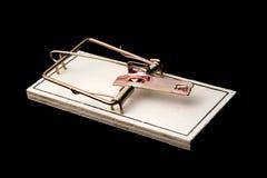 svart mousetrap Arkivfoto