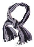 Svart- och grå färgscarf Arkivbild