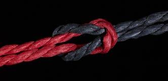 Svart och röd fnuren Royaltyfri Foto