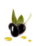 Svart oliv med olja tappar på vit Arkivbilder