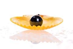 svart pärla Arkivfoton