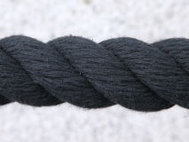 svart rep Arkivfoton