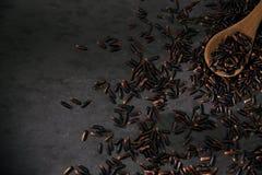 svart rice Fotografering för Bildbyråer