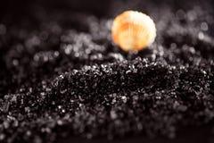 Svart salt lavahav för hawaiibo arkivfoton