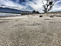 svart sand Royaltyfri Fotografi