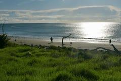 Svart sandstrand i eftermiddagljus arkivfoton