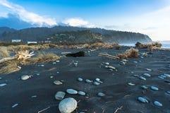 Svart sandstrand med grå stenar och drivved med skogen i bakgrunden fotografering för bildbyråer