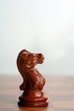 svart schackriddare Arkivfoto