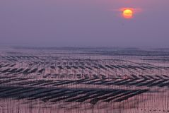 svart sikt för soluppgång för hav för crimea dag karaberg Arkivfoto