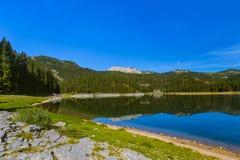 Svart sjö Crno Jezero i Durmitor - Montenegro Royaltyfri Fotografi