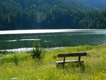 Svart sjö Montenegro Royaltyfri Fotografi