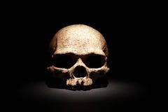 svart skalle Arkivbild