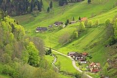 Svart skog, Tyskland Arkivfoton