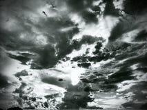 svart sky Arkivbilder