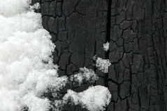 svart snow Arkivbilder