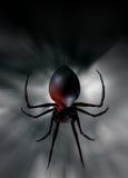 svart spindelänka Royaltyfria Bilder