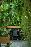 Svart stol i trädgården för kopplar av Royaltyfria Foton