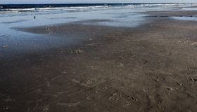 Svart strand Royaltyfria Foton