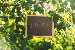 Svart tavla som hänger på träd på trädgården med text Arkivbilder