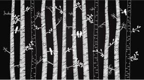 Svart tavlabjörk eller Aspen Trees för vektor med Autumn Leaves och förälskelsefåglar royaltyfri illustrationer