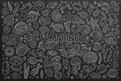 Svart tavlauppsättning av objekt för marin- liv Royaltyfri Fotografi