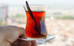 Svart te från Black Sea Arkivfoton