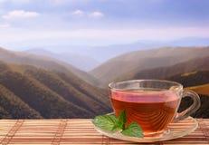 Svart te i berg Arkivfoto