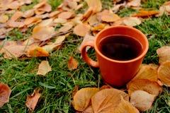 Svart te i orange kopp på grönt gräs och gula stupade sidor Arkivbild