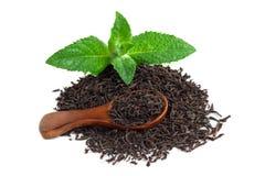 Svart te med mintkaramellen och en träsked Royaltyfria Foton