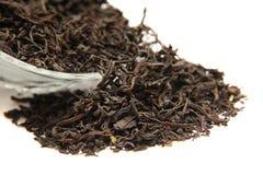 svart tea Arkivbilder