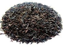 svart tea Royaltyfri Bild