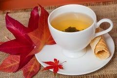 Svart Tea med nedgången lämnar och bakelse Royaltyfri Bild