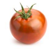 svart tomat Arkivbilder
