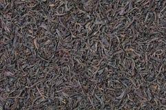 svart torr tea Royaltyfri Fotografi