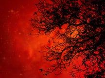 Svart träd mot orange galax royaltyfri fotografi