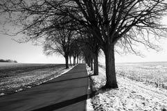 svart vägwhite Arkivfoto