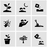 Svart växande symbolsuppsättning för vektor Arkivfoto