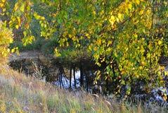 svart vatten Fotografering för Bildbyråer