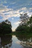 svart vatten Arkivfoto