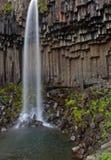 Svart vattenfall Svartifoss Island Arkivfoto