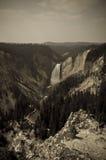svart vattenfallwhite arkivbild